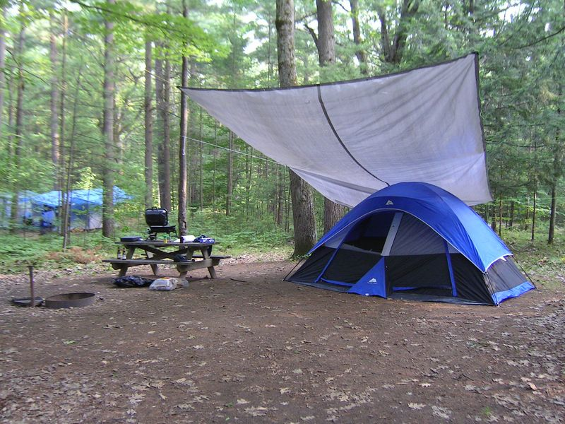 اردو زیر باران